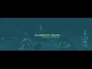 Flamenco Trane